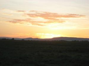 maasaimara マサイマラ