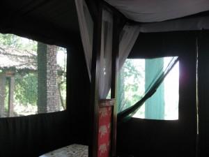 フィグツリーキャンプ